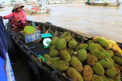 20152408_divert the mekong 2